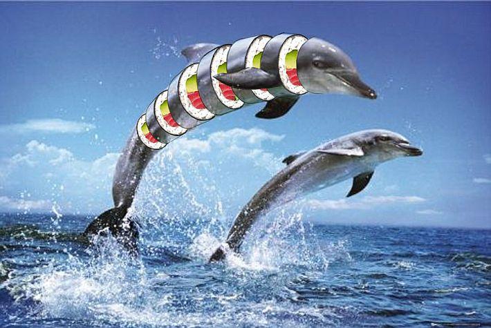 http://gideonwright.deviantart.com/art/Dolphin-Sushi-160525726