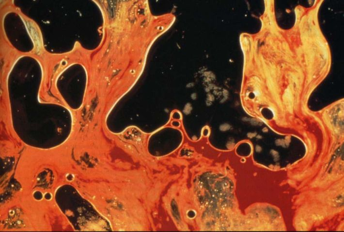 blood sperm serrano