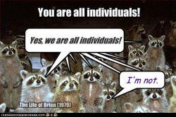 individuals3