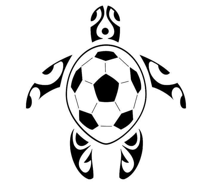 schildpadvoetbal